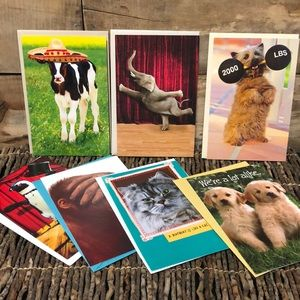 20 new American greetings cards funny animal